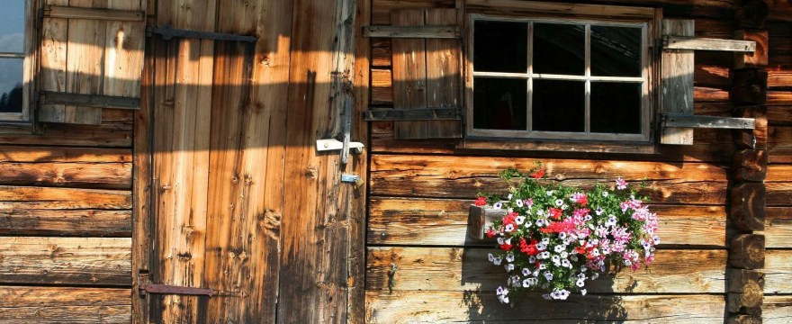 Buying Guide: Best Log Cabin Treatment & Wood Preserver