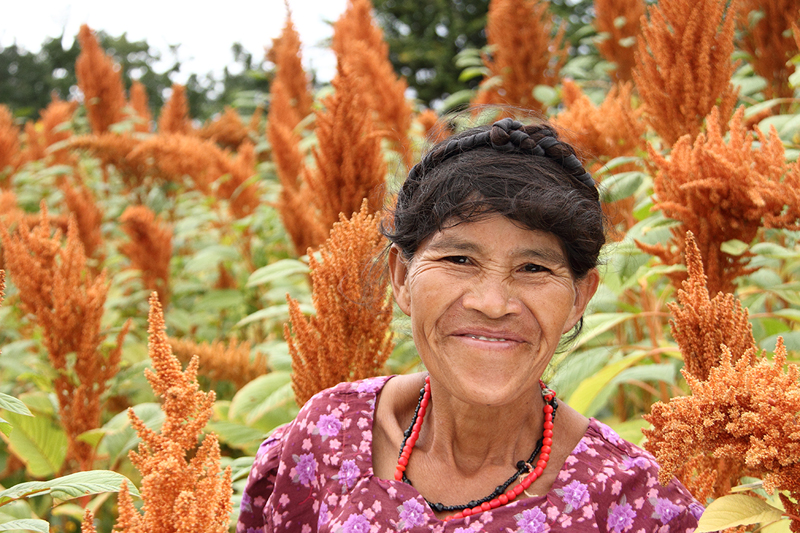 Women farmers grow healthy crops like amaranth to support their families and their community.