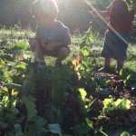 Five Simple Steps You Can Take Today to Get Your Kids Gardening