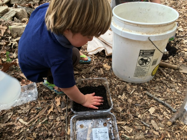 Pat down the soil mix evenly