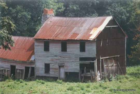 The log house of my childhood. Built on a hall-parlor plan, it had a side frame addition and a detached kitchen.
