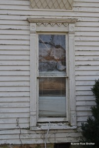 This is a lovely window, even though I'm not talking about them...I love the fairly elaborate surround with fluted pilasters flanking the sash on the sides, topped by an entablature lintel with a fluted frieze, bulls eye blocks to either side, and a delicate scalloped molding.