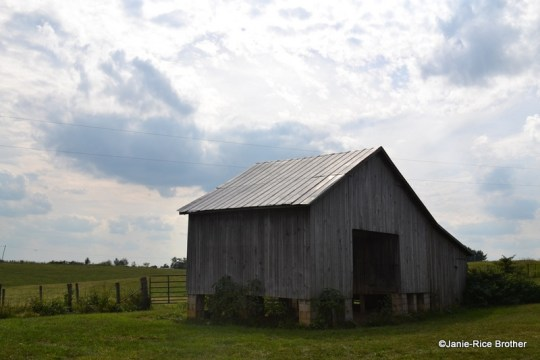 Corncrib, Nicholas County, Kentucky.