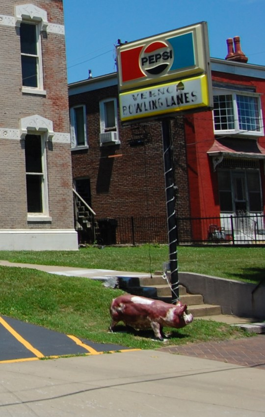 Landmarks in their own right...the sign and pig in front of the Vernon Club.