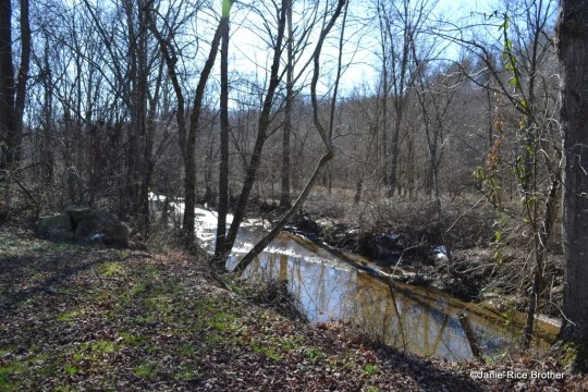 Cindas Creek flows alongside Highway 172 in this part of Morgan County, Kentucky.