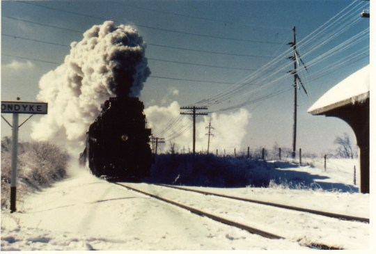 A cousin's photo of the train coming in to Klondike Station - the station is barely visible at the right.