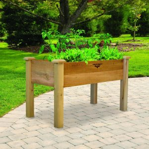 The gronomics elevated garden bed is great for no bend gardening.