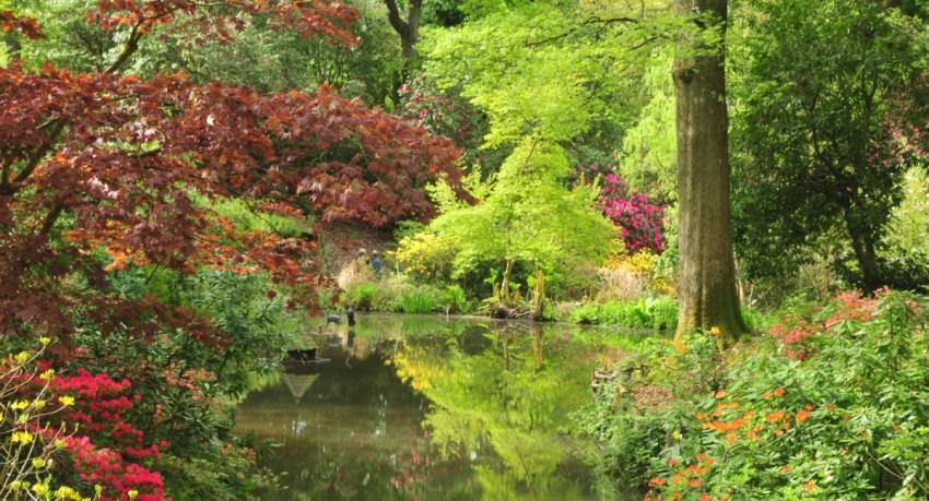 Ramster Garden