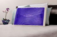 Sealy Optimum Memory Foam King Bed Pillow with Optigel