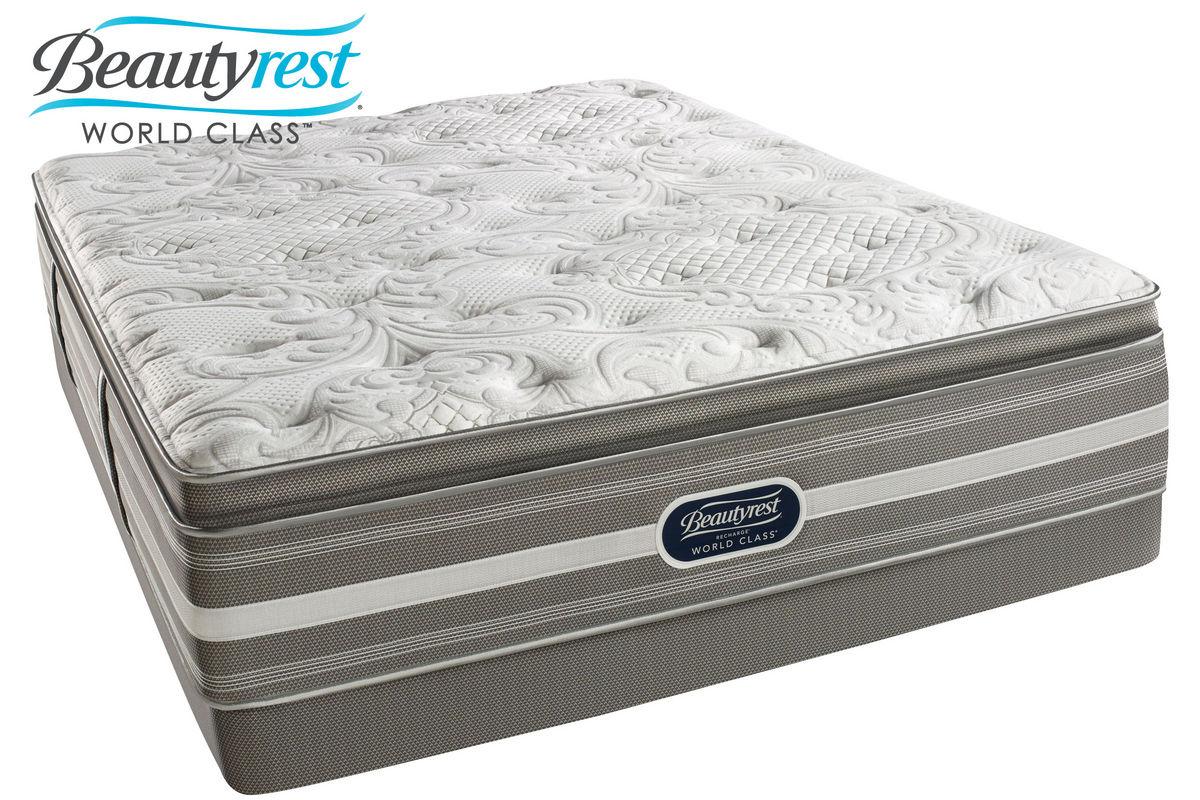 Beautyrest Recharge World Class Jaelyn Plush Pillow