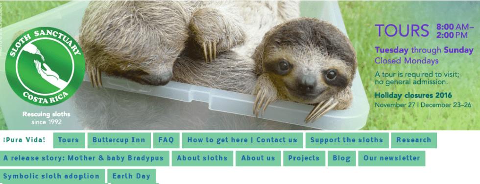 slothwebsite