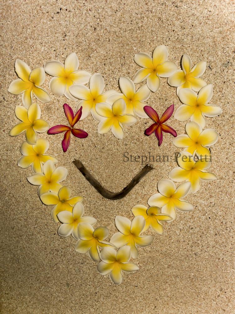 Cœur en fleurs de frangipanier pour la St Valentin, ile de Tiga, Nouvelle-Calédonie