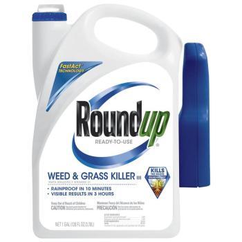 Roundup 1-Gallon Weed & Grass Killer 5002610