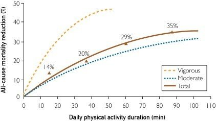 Exercises reducing mortality