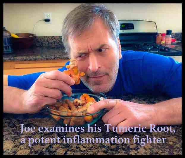 Joe examines his tumeric root