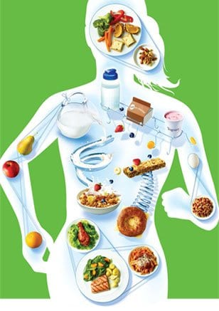 Three Nutrition and Exercise Tips