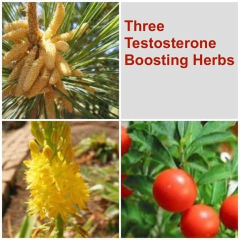 Three herbs for more mojo