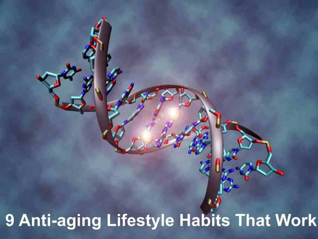 Anti-aging lifestyle habits