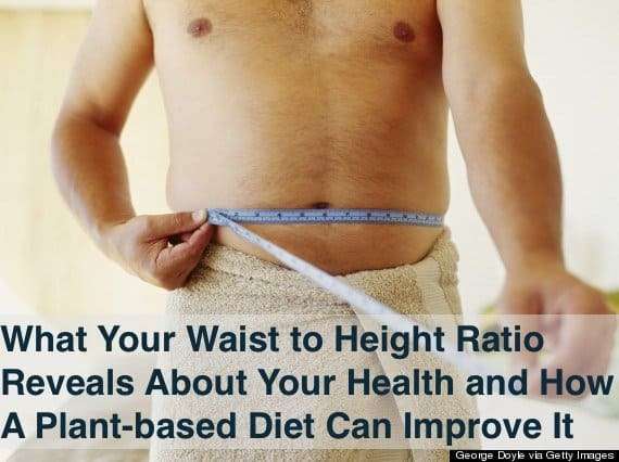 Your Waist to Height Ratio is an important indicator of lifespan