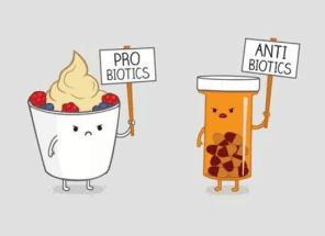 Always take probiotics if you must take antibiotics
