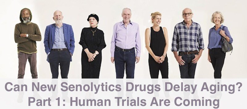 Can New Senolytics Drugs Delay Aging in Humans?