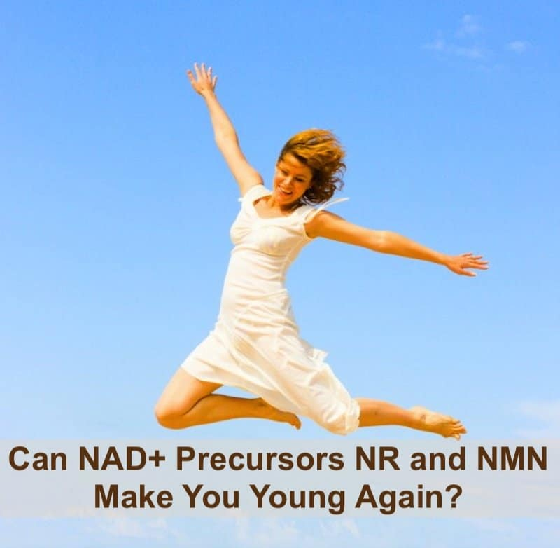 Can NAD+ Precursors NR and NMN Make You Young Again? – Garma