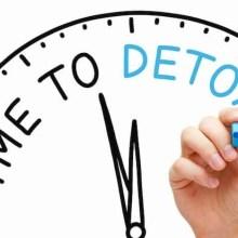 detox your gut