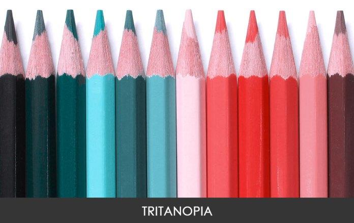 Essa imagem mostra como a pessoa com Tritanopia enxerga as cores. Bem diferente, não?