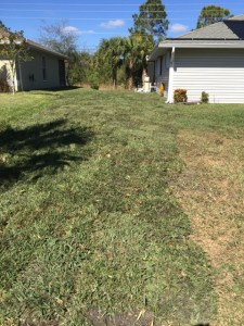 garrett property management repairs drainage and install sod