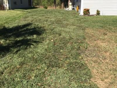 garrett property management repairs drainage and install sod