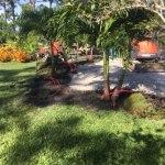 garrett property management, landscape design and build out, beach builders