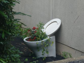 Toilet with flowers in