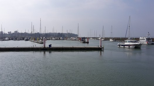 Boats in the harbour