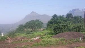 The Satmala hills.