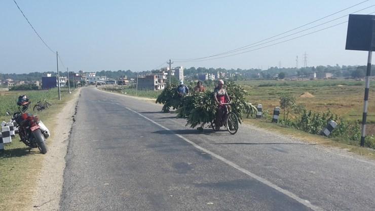 Motorbike on a road