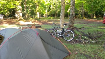 Campsite in the New Forest