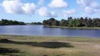 Hatchet pond