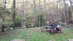 Bike in the woods