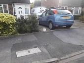 Cat sat outside a house