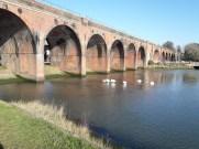 Viaduct, water swans