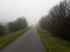 Path trees mist