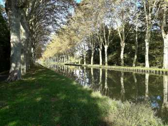 Tree lined canal coming into Strasbourg