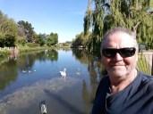 Man by pond