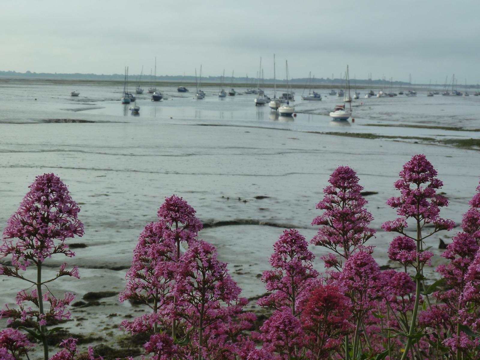 Langstone harbour Portsmouth