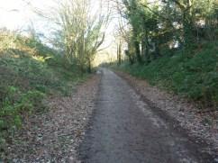 Railway path
