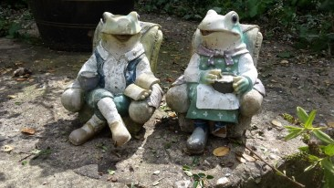 frogs in a pub garden