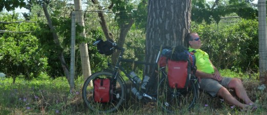 Man and bike by tree
