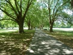 Jesus Green Cambridge