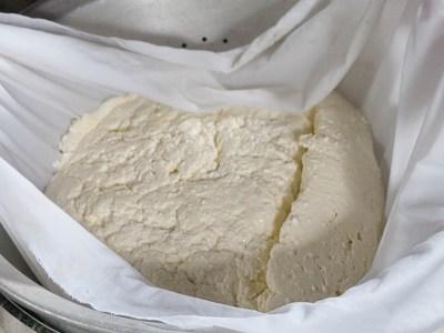 Baltais siers