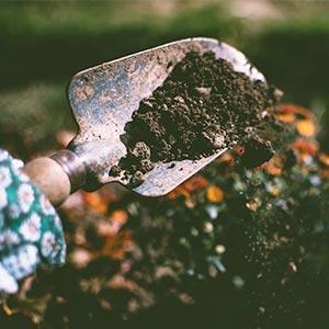 Gartengestaltung und Gartenarbeit als Allergiker